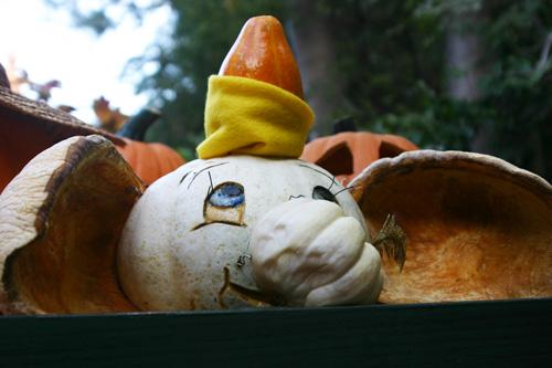 Dumbo-pumpkin